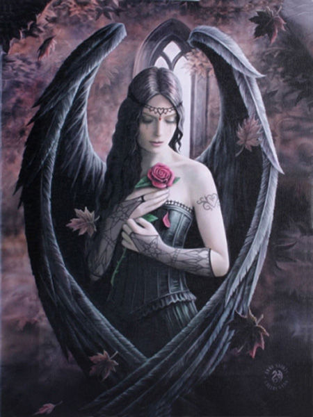 Angel Rose Canvas Wall Plaque by Anne Stokes