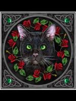 Black Cat Greetings Card #1